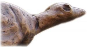 Hohle Fels Vogel Detail